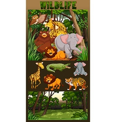 Wildlife living in the forest vector image