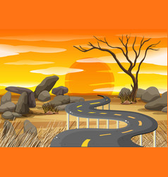 sunset at savanna field vector image vector image