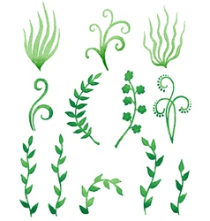 Grass curl vector
