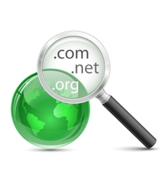 domain search icon vector image