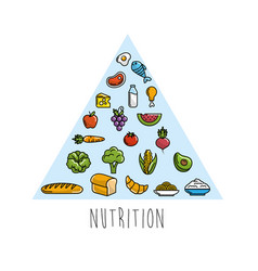 Healthy nutrition inside triangle icons vector