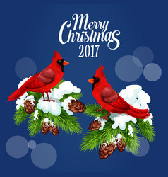 Merry christmas greeting poster red bird cardinal vector