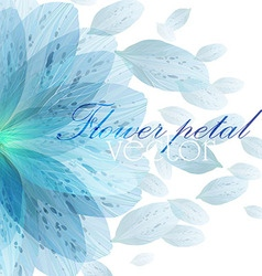 Floral round pattern of blue flower petals vector