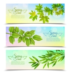 Horizontal banners set with green branches vector