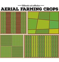 Aerial farming crops pattern vector