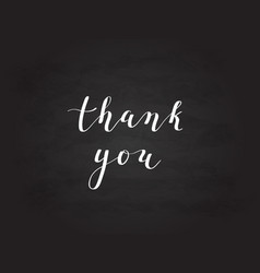 hand-drawn thank you digital calligraphy vector image vector image