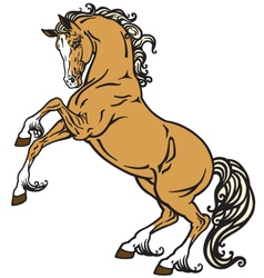 horse vector image