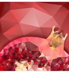 Pomegranate macro polygonal design vector