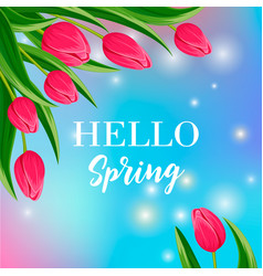 Hello spring banner with blooming tulip vector