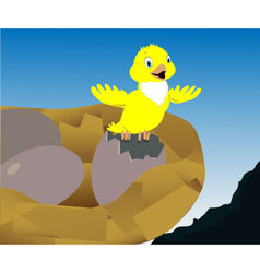 Yellow bird vector