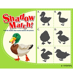 Shadow matching game with duck vector