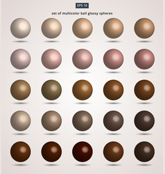 set of brown ball color tone glossy spheres vector image