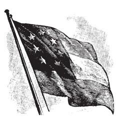 The confederate flag on a flag pole vintage vector
