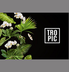 tropical orchid horizontal banner vector image vector image