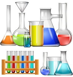 Glass beakers and test tubes vector image