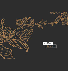 Template coffee black vector