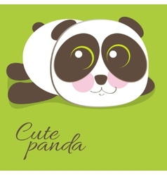 Cute young baby panda bear vector