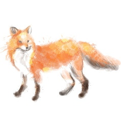 Fox watercolor vector image