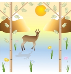 The roe in the wild nature vector image