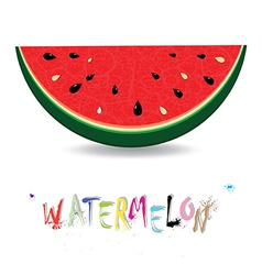 Watermelon fresh slices background vector