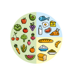 Fruits and vegetables with protein food vector