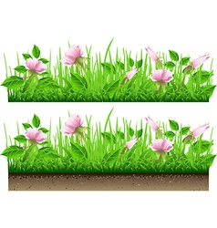Grass border with flowers isolated on white vector
