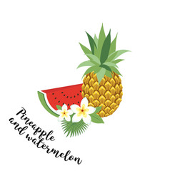 Pineapple and watermelon - vector