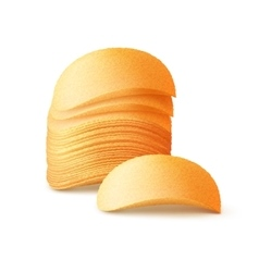 Stack of potato chips isolated on background vector