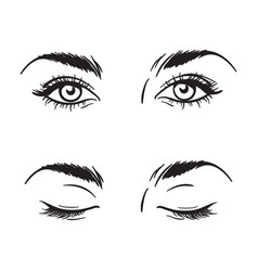 beautiful female eyes set - open and closed vector image