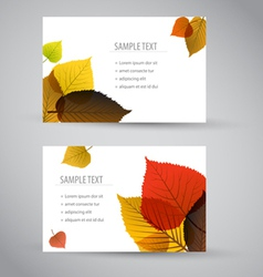 cards with leafs vector image