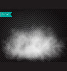 fog or smoke cloudiness transparent effect vector image