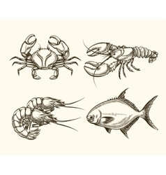 Seafood in hand drawn style vector