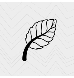 Leaf icon design vector