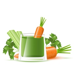 Celery juice with carrot vector image