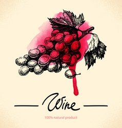 Watercolor hand drawn wine vintage background vector image