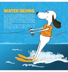 Funny cartoon dog water skiing happy moments vector