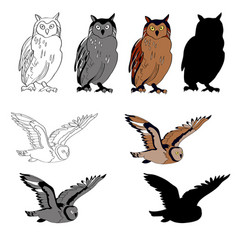 an image of an owl in vector image