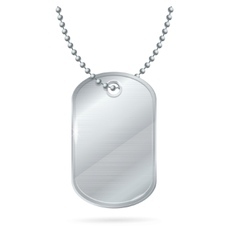 Military id tag silver army medallion vector