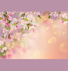 Spring apple blossom vector