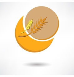 Grain background with sun rays vector