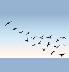 Bird flock flying over blue sky background animal vector