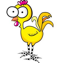 cute little chicken vector image vector image