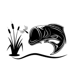 jumping bass for dragonfly vector image