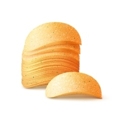 Stack of potato crispy chips close up isolated vector