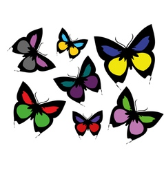 Collection of coloured butterflies vector