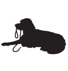Shaggy dog silhouette vector