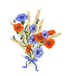 Beautiful bouquet of cornflowers poppies and vector