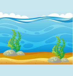 ocean scene with seaweed underwater vector image