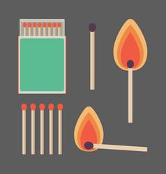 match sticks and box set flat vector image