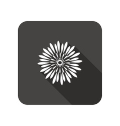 Chrysanthemum flower icons floral symbol vector